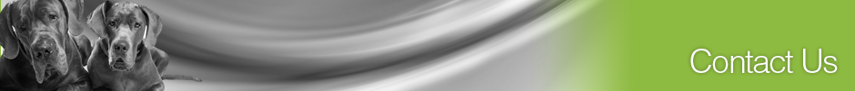 inside_contact_banner_940px